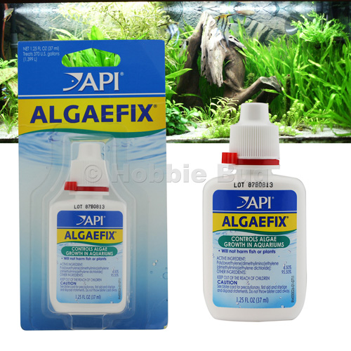 Api algaefix fish tank algae control for fresh water for Algae bloom in fish tank