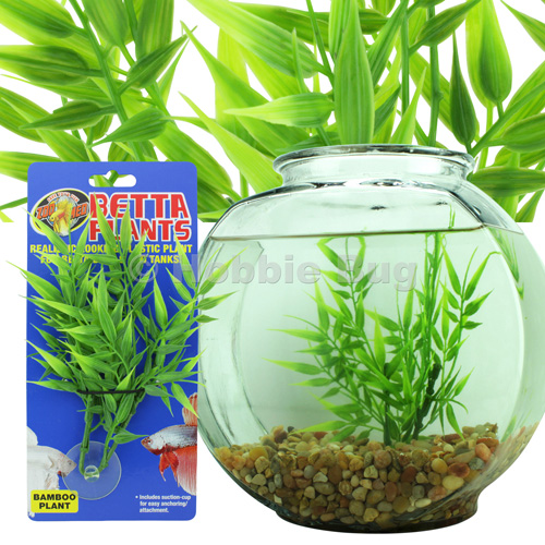 Betta fish bowl with bamboo for Beta fish bowl