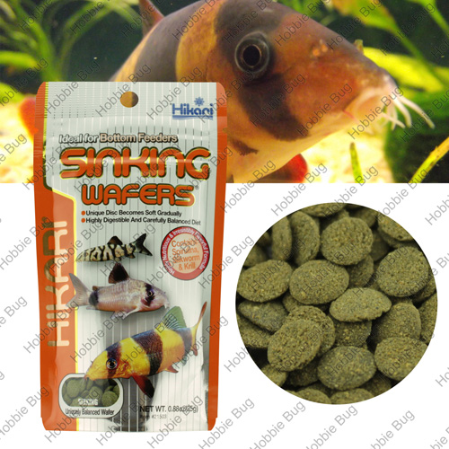 Hikari tropical sinking wafers 88 oz fish food rapid for Bottom feeder fish list