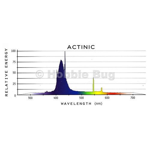 "Aquarium T5 Light Bulb Lamp Reef Marine Actinic Blue Fish: Coralife Actinic Bluelight 24"" 24W High Output T5 HOT5"