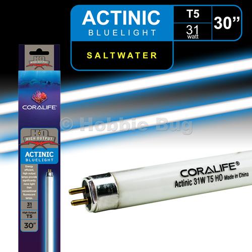"Aquarium T5 Light Bulb Lamp Reef Marine Actinic Blue Fish: High Output T5 HOT5 Aquarium Tank Light Tube 30"" 31W"